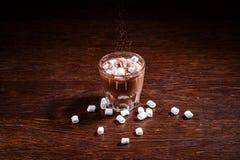 Chocolate quente com Marshmallows Fotografia de Stock Royalty Free