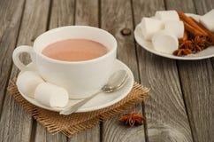 Chocolate quente com marshmallows e especiarias fotos de stock royalty free