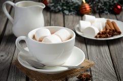 Chocolate quente com marshmallows e especiarias foto de stock royalty free