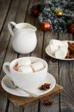 Chocolate quente com marshmallows e especiarias imagem de stock royalty free