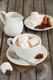 Chocolate quente com marshmallows e especiarias fotografia de stock