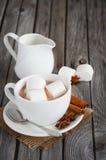 Chocolate quente com marshmallows e especiarias imagens de stock