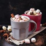 Chocolate quente com marshmallows e especiarias na tabela da obscuridade do grunge fotos de stock royalty free