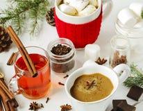 Chocolate quente com picante, os marshmallows e chá picante Foto de Stock