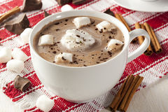 Chocolate quente gourmet Imagens de Stock Royalty Free