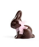 Chocolate rabbit Royalty Free Stock Photo