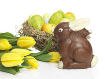 Chocolate rabbit with eggs and Daffodils stock images