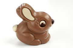 Chocolate rabbit Royalty Free Stock Images