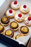 Chocolate and raspberries tarts Stock Photos