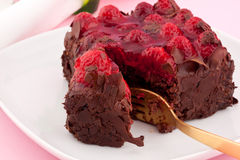 Chocolate raspberry cake Stock Image