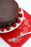 Chocolate Raspberry Cake Stock Photography