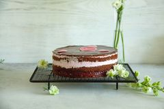 Chocolate and raspberry cake on a black baking tray with white flowers. Lying on a grey table stock photos