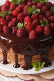 Chocolate raspberry cake with fresh berries close up vertical Stock Photography