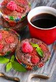 Chocolate raspberry cakes Stock Images
