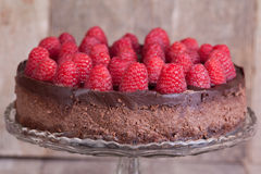 Chocolate raspberry cheesecake Royalty Free Stock Images