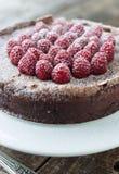 Chocolate Raspberry tart Royalty Free Stock Images