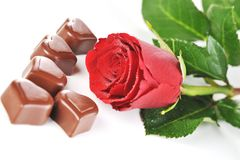 Chocolate and red rose Stock Photography