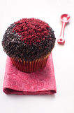 Chocolate red velvet muffin Stock Images