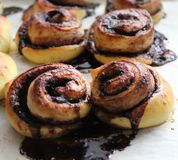 Chocolate-roll Stock Image
