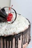 Chocolate sacher cake Stock Photography