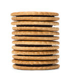 Chocolate Sandwich Cookies. Six chocolate sandwich biscuits arranged in stack royalty free stock photos