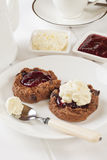 Chocolate Scones with Jam and Cream royalty free stock photos