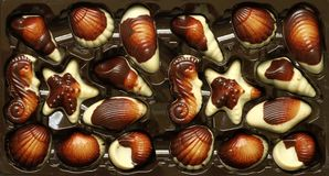 Chocolate seafood Royalty Free Stock Image