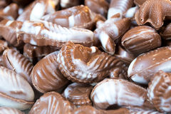 Chocolate Sealife Shapes Royalty Free Stock Images