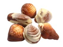 Chocolate seashells Royalty Free Stock Image