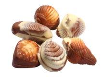 Chocolate seashells. On white background Royalty Free Stock Image