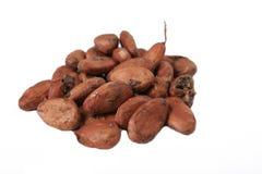 Chocolate seeds stock photography