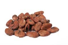 Chocolate seeds Royalty Free Stock Photos