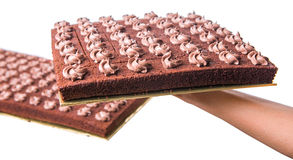 Chocolate Sheet Cake II Stock Image