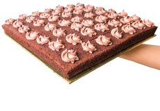 Chocolate Sheet Cake VIII Royalty Free Stock Photos