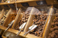 Chocolate shop. Assortment in Bordeaux chocolate shop Stock Photography