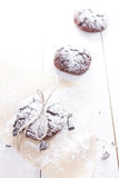 Chocolate snow cap cookies for Christmas Stock Photos