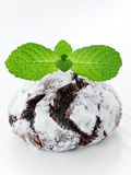 Chocolate snowcap. Cookie with mint. Shallow dof Stock Image