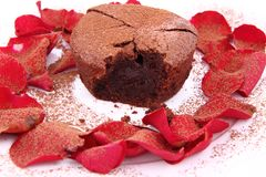 Chocolate souffle Stock Images