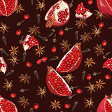 Chocolate spicy pomegranate seamless vector pattern Stock Photos