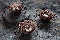 Chocolate spider cupcakes for Halloween party Stock Photo