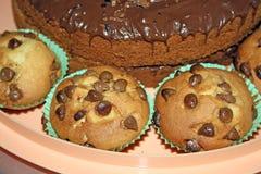 Chocolate Sponge cake Royalty Free Stock Image