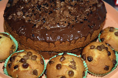 Chocolate Sponge cake Stock Photo