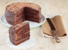 Chocolate sponge cake with chocolate buttercream Stock Photos
