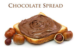 Chocolate spread and filbert nuts. Bread with chocolate spread and filbert nuts close up Royalty Free Stock Photo