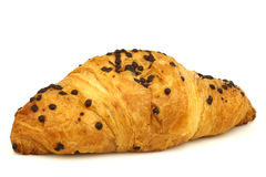 Chocolate sprinkled and filled fresh croissant Stock Images