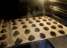 Chocolate spritz biscuits  in a baking oven Stock Photos