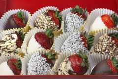 Chocolate Strawberries Royalty Free Stock Photos