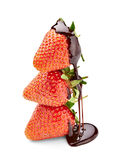 Chocolate strawberry Royalty Free Stock Photo