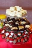Chocolate Strawberry Fondue Stock Images