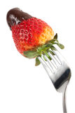 Chocolate Strawberry On Fork Royalty Free Stock Photo